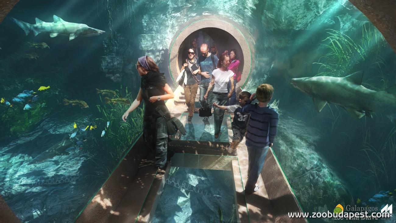 Részlet a tervezett Pannon-tenger akváriumból